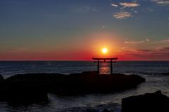 磯前神社の鳥居にて朝日