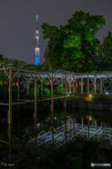 亀戸神社の藤祭2