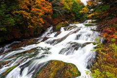 竜頭の滝(2021年10月)