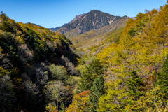 南八ヶ岳の紅葉