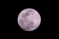 月光20200307