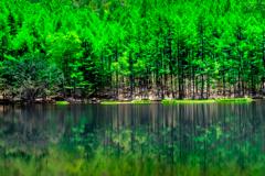 深緑の御射鹿池2