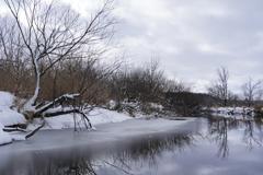 釧路湿原#3