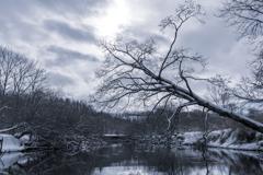 釧路湿原#5