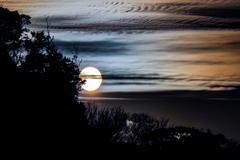 黄昏時の太陽