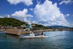 夏光る漁港
