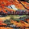 モミジ飾りの吊り橋