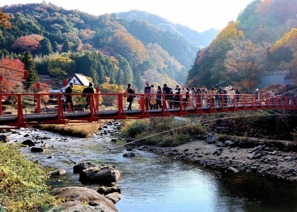 朝の香嵐橋 香嵐渓上流部