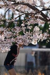 桜の香りに酔いしれて