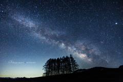 星の世界へ・・・再会の場所