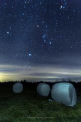 高原の星たち