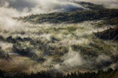 雲を纏う湿原