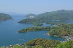 新緑の舞鶴湾