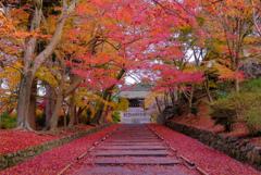 秋色の参道