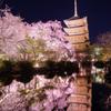 東寺の春Ⅱ