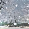 雪降る街角2