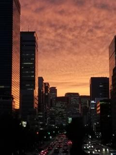 名古屋駅前夕景