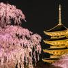 夜に浮かぶ京の春景
