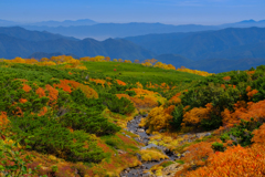 彩の山岳庭園