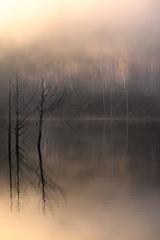自然湖の朝