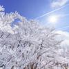樹氷華やぐ