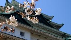 2015 名古屋城と桜