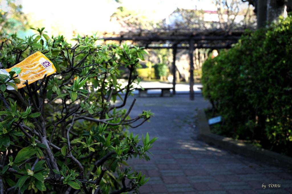 314_公園