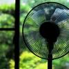 真夏の風・・・