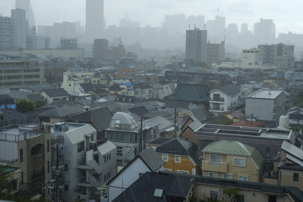 驟雨・・・
