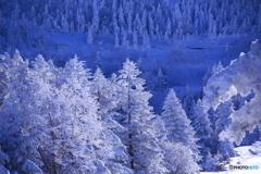 まだまだ冬
