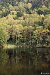秋の池めぐり 2