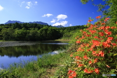 湖畔の朱色