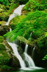 うぐいすの滝