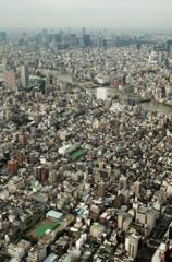 大、東京。