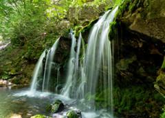 猿壺の滝5.22