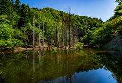 砂防ダム湖