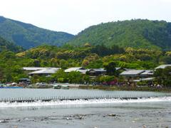 嵐山 part4