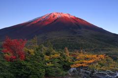 初冠雪の紅富士