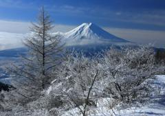 樹氷の輝き