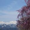 富山 春の風景