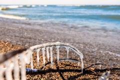 浜辺の垂れ氷