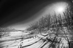 真冬日の太陽