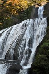 袋田の滝(下から)