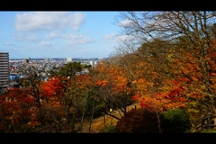 千秋公園2
