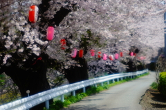 太平川堤防2