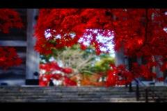 千秋公園6
