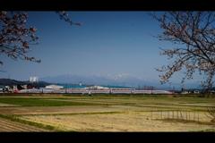 太平山とこまち