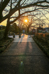 冬の散歩道 02