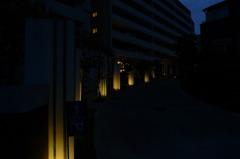 夕刻のプロムナード