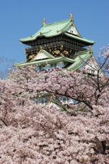 満開の大阪城